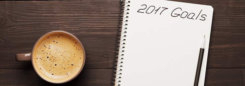 2017 Goals notepad to organise your finances