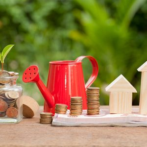 House prices now: houses standing on money. Pensioner income: penny jar, Seedling: life changing amounts.