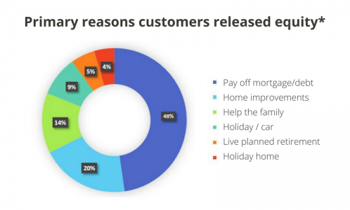 Pie Chart showing primary reasons customers released equity