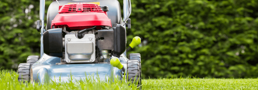Spring Gardening, mowing the lawn