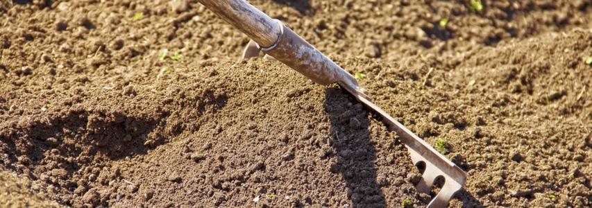 Spring Gardening, racking soil